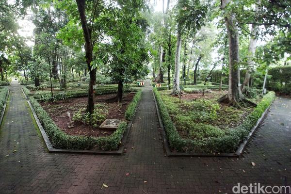 Berada di tengah ibu kota, hutan ini seolah menjadi oase bagi masyarakat Jakarta dan sekitarnya yang haus akan kesejukan namun tak ingin pergi jauh sampai ke luar kota.