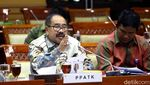 PPATK Buka-bukaan Rekening Kasino Kepala Daerah di DPR