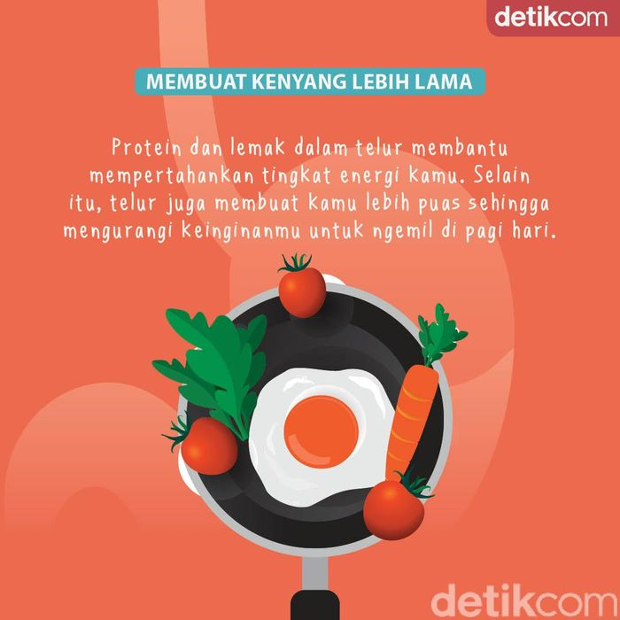 infografis sarapan telur