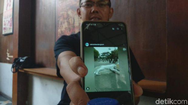 Patung Harimau di Bandung 'Loncat' Diduga Dirusak Orang Gila