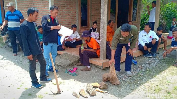 Warga Desa Sumberndo, Kecamatan Saradan, Kabupaten Madiun menemukan fosil banteng dan kudanil purba. Selain itu, warga juga menemukan fosil gajah serta kura-kura.
