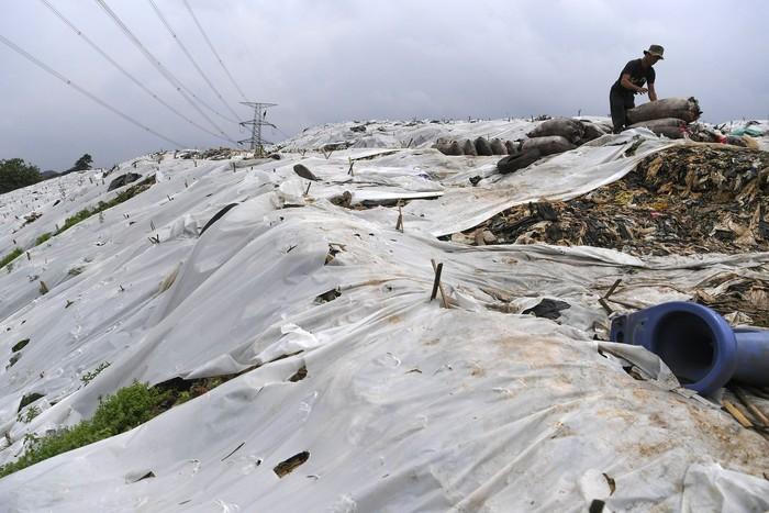 Pekerja membawa sampah menggunakan gerobak melintasi plastik yang menutup tumpukan sampah di TPA Cipayung, Depok, Jawa Barat, Jumat (6/2/2020). Menurut pengelola, penutupan sebagian tumpukan sampah dengan plastik tersebut untuk mengurangi bau dan mengurung gas metan dari sampah. ANTARA FOTO/Wahyu Putro A/hp.