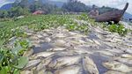 63 Ton Ikan Keramba di Sumbar Mati Akibat Angin Kencang