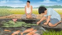 Ikan-Ikan di Empang Belakang