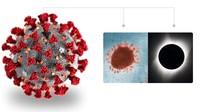 RSMH Palembang Isolasi Satu Pasien Suspect Virus Corona