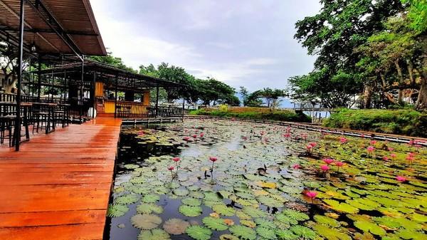 Kalau kamu ke Palu, Sulawesi Utara, jangan lupa ke Taipa Beach. Di sana, ada kafe unik yang berada di tengah danau, namanya Lake Cafe. (Mohammad Qadri/detikcom)