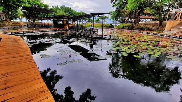 Lokasi wisata ini sempat rusak parah saat tsunami yang terjadi pada September 2008 lalu. Lalu sang owner mendirikan kembali kafe ini dengan konsep baru. (Mohammad Qadri/detikcom)