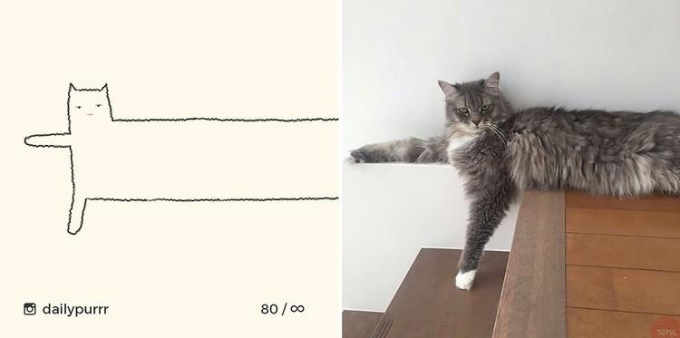 ilustrasi kucing sederhana tapi bisa mengundang tawa
