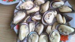 Kuy Ah! Pesta Seafood Murah di Pesisir Pantai Pangandaran