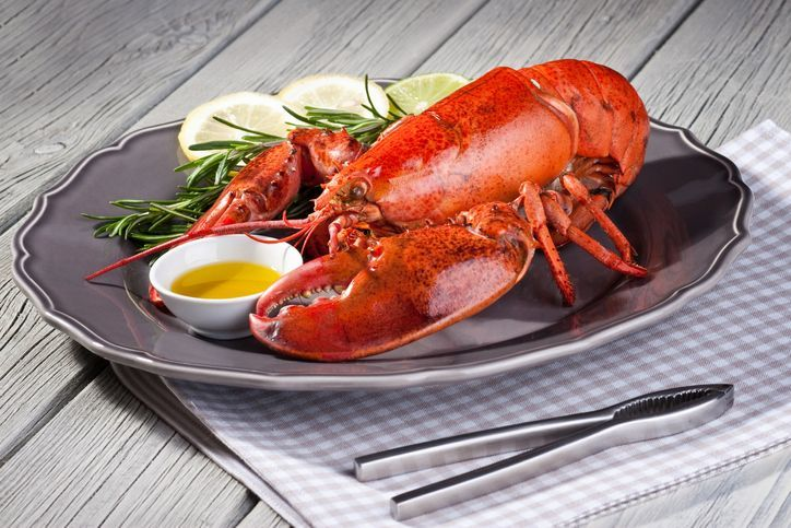 Red lobster on plate.[url=file_closeup.php?id=16437496][img]file_thumbview_approve.php?size=1&id=16437496[/img][/url] [url=file_closeup.php?id=16437396][img]file_thumbview_approve.php?size=1&id=16437396[/img][/url] [url=file_closeup.php?id=16386162][img]file_thumbview_approve.php?size=1&id=16386162[/img][/url] [url=file_closeup.php?id=16386128][img]file_thumbview_approve.php?size=1&id=16386128[/img][/url] [url=file_closeup.php?id=16386105][img]file_thumbview_approve.php?size=1&id=16386105[/img][/url] [url=file_closeup.php?id=16378940][img]file_thumbview_approve.php?size=1&id=16378940[/img][/url] [url=file_closeup.php?id=16332697][img]file_thumbview_approve.php?size=1&id=16332697[/img][/url] [url=file_closeup.php?id=16378912][img]file_thumbview_approve.php?size=1&id=16378912[/img][/url] [url=file_closeup.php?id=16332604][img]file_thumbview_approve.php?size=1&id=16332604[/img][/url] [url=file_closeup.php?id=16331215][img]file_thumbview_approve.php?size=1&id=16331215[/img][/url] [url=file_closeup.php?id=16814037][img]file_thumbview_approve.php?size=1&id=16814037[/img][/url] [url=file_closeup.php?id=16954062][img]file_thumbview_approve.php?size=1&id=16954062[/img][/url] [url=file_closeup.php?id=17335470][img]file_thumbview_approve.php?size=1&id=17335470[/img][/url] [url=file_closeup.php?id=17335441][img]file_thumbview_approve.php?size=1&id=17335441[/img][/url]