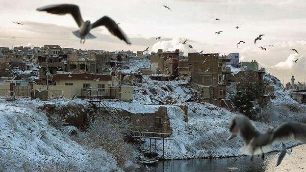 Suasana tepian Sungai Tigris di Mosul yang diselimuti salju. Tampak pula sejumlah burung camar yang lalu lalang (Zaid Al-Obeidi/AFP)