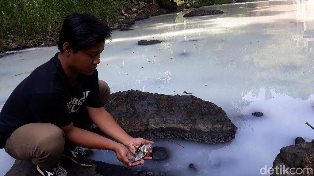 Duh! Sungai di Kulon Progo Tetiba Keruh dan Berbau