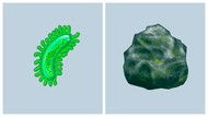 Ribut-ribut Ilmuwan Soal Emoji Baru Virus dan Batu