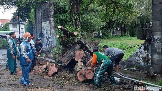 Diguyur Hujan Deras, Belasan Pohon Tumbang dan Bangunan di Yogya Rusak