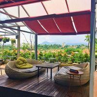 5 Tempat Makan Romantis di Puncak dengan Panorama Bukit Cantik