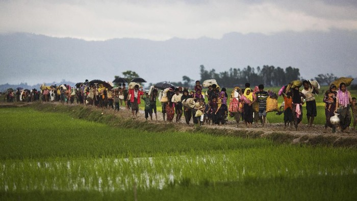 FILE - In this Sept. 1, 2017, file photo, members of Myanmars Rohingya ethnic minority walk past rice fields after crossing the border into Bangladesh near Coxs Bazars Teknaf area. An overcrowded boat carrying about 125 Rohingya refugees from Bangladeshi camps sank early Tuesday, Feb, 11, 2020, in the Bay of Bengal, leaving at least 16 dead, Bangladeshi officials said Tuesday. More than 700,000 Rohingya Muslims fled to Bangladesh from neighboring Myanmar to flee a harsh crackdown by Myanmars military since August 2017. (AP Photo/Bernat Armangue, File)