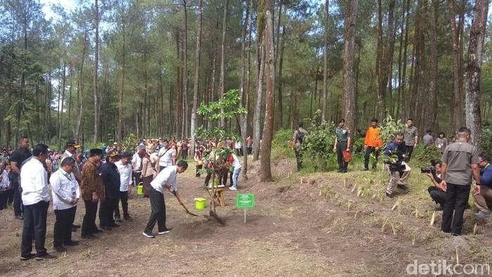 Jokowi menanam pohon Pule di TNGM Magelang, 14/2/2020