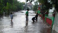 Hujan Deras di Pasuruan Sebabkan Banjir, Tanggul Jebol dan Pohon Tumbang