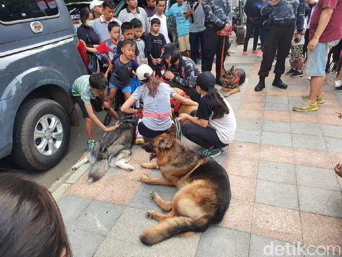 Anjing pelacak dan kuda pengendali massa dipamerkan di kawasan CFD Jakarta.