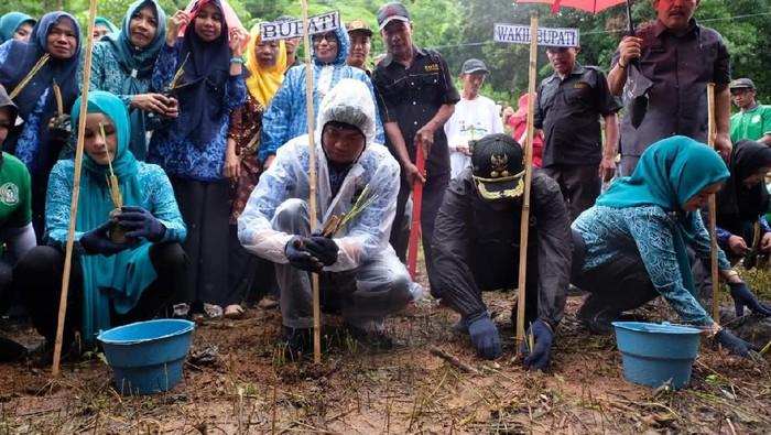 Bupati Gowa Adnan Purichta Ichsan menindaklanjuti arahan Presiden Joko Widodo (Jokowi) untuk menanam tanaman vetiver (Dok. Istimewa)