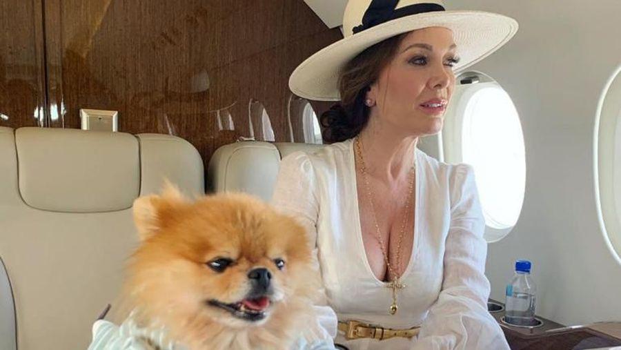 Anjing peliharaan Chrissy Teigen.