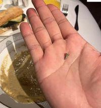 Makan di Pesawat, Penumpang Ini Temukan Sekrup di Sup Pesanannya