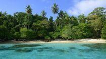 Turis Bertahan Hidup dengan Minum Air Hujan dan Makan Kelapa
