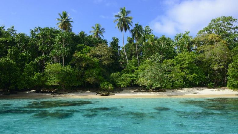 View of the clear water and tropical coastline of Pig Island, a small and uninhabited island off the coast of Madang, Papua New Guinea