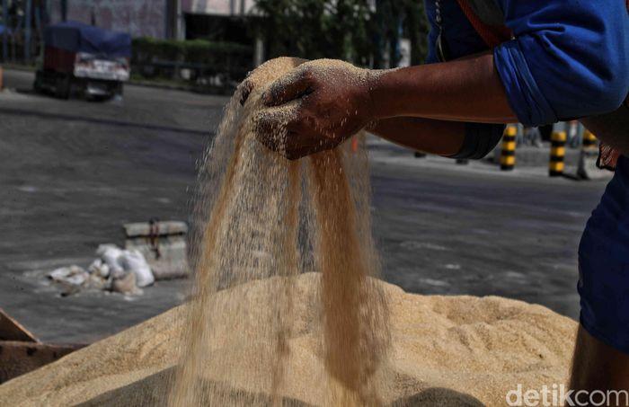 Seorang pekerja tengah melakukan bongkar muat gula impor dari Filipina di kawasan Terminal 2 IPC, Tanjung Priok, Jakarta, Selasa (18/2/2020).