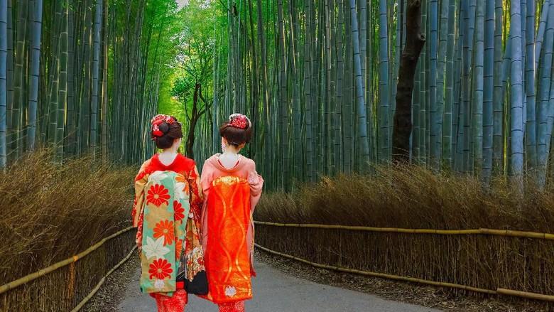 Kyoto, Japan - November 22 2015: Unidentified Japanese Geisha at Chikurin-no-Michi (Bamboo Grove) in Arashiyama district