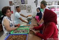 Toko Herbal Babah Indonesia hanya menjual herbal saja.