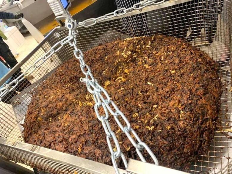 Pecahkan Rekor Dunia, Chef Ini Masak Onion Bhaji Seberat 175 Kilogram!