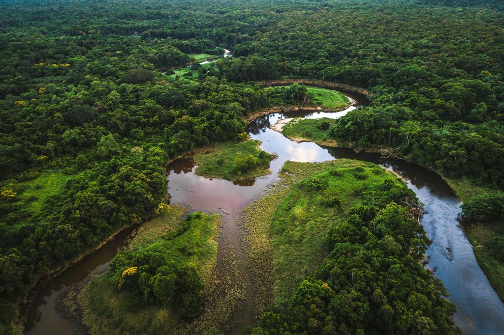 Drone Footage hutan Amazon
