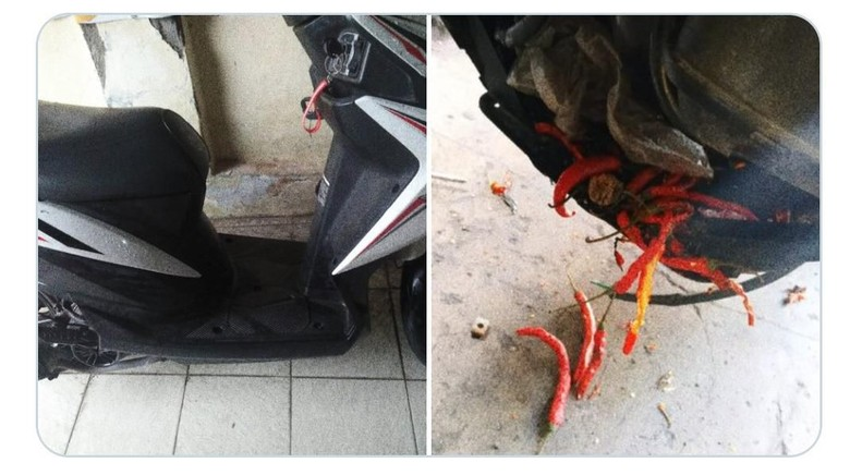 motor mogok karena cabai