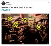 Meme Erling