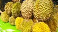 Festival Durian Kalijaya Hadirkan Durian Bernama Unik yang Manis Legit