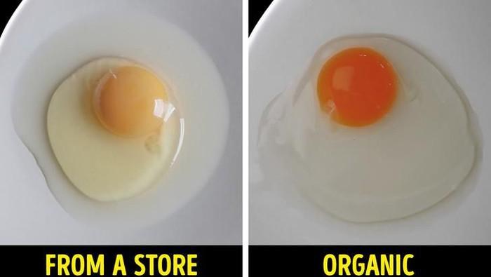 Cara cek kualitas makanan