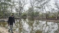 Hutan mangrove yang mereka tinggali sudah makin sempit. (ANTARA FOTO/Fakhri Hermansyah)