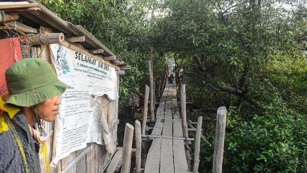 Situasi di kawasan konservasi lutung Jawa di Muaragembong. (ANTARA FOTO/Fakhri Hermansyah)