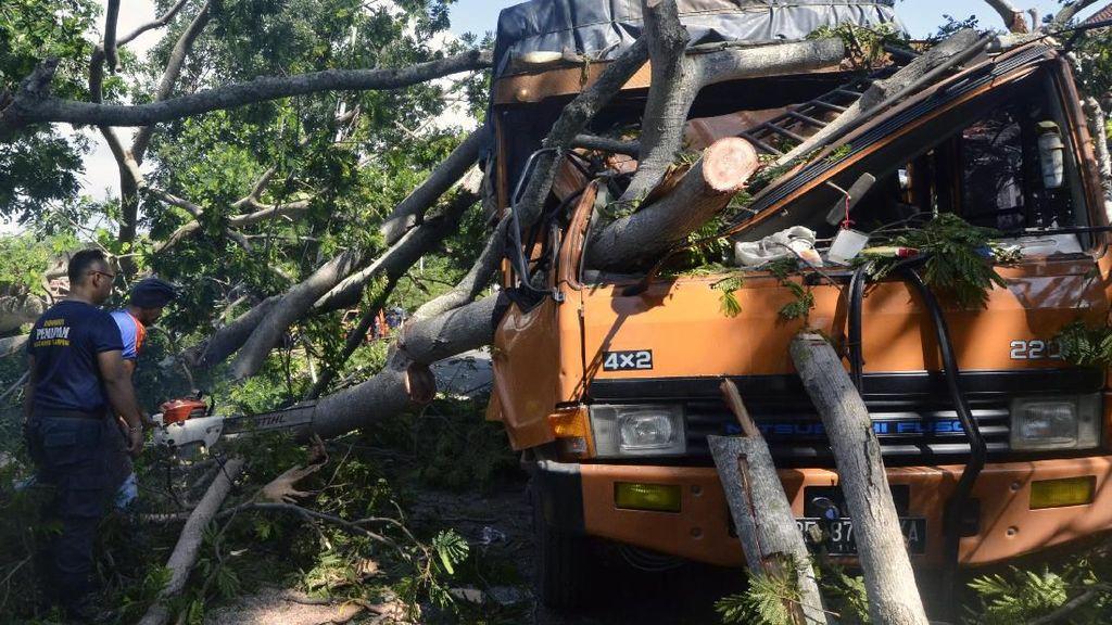 Duh, Truk Ini Jadi Korban Pohon Tumbang di Lampung