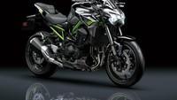 Dibanderol Rp 250 Juta, Ini 5 Fakta Kawasaki Z900 2020 yang Dirilis di RI