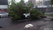 Hujan Disertai Angin Kencang Terjang Kota Blitar, Puluhan Pohon Tumbang