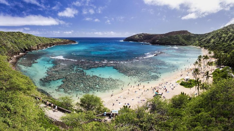 Snorkeling at the coral reef of Hanauma Bay, a former volcanic crater, now a national reserve