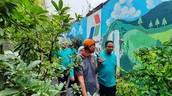 Melihat Kampung Hijau di Cempaka Putih Kurangi Sampah Plastik