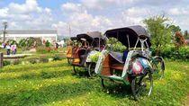 Ini Jogja Agro Tekno Park, Tempat Wisata Cantik yang Tersembunyi