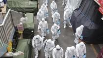 Virus Corona Sudah Menyebar ke 46 Negara, Arab Saudi Setop Umrah