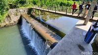 Basarnas: Seluruh Korban Tewas Susur Sungai SMPN 1 Turi Telah Ditemukan