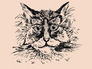 Tes Kepribadian: Kucing atau Kupu-kupu yang Pertama Kali Dilihat?