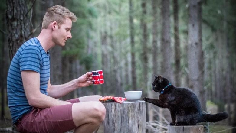 Traveling bersama kucing