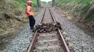 Viral Tumpukan Batu Besar di Tengah Rel, PT KAI: yang Numpuk Orang Dewasa